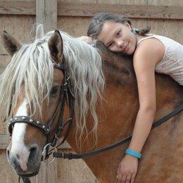 Экскурсии и туристические услуги -  Детский конный лагерь в Подмосковье., 0