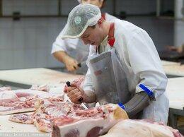 Разнорабочий - Рабочий на мясокомбинат, 0