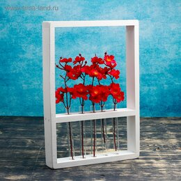 Цветы, букеты, композиции - Живые цветы, букеты в колбе, 0