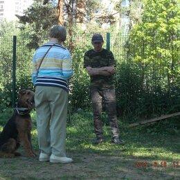 Услуги для животных - Инструктор по дрессировке собак, 0