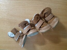 Одежда и обувь - Тапочки для собак, 0