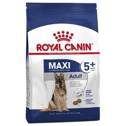 Корма  - Royal Canin Maxi 5+ 15 кг Сухой корм для собак с 5 лет крупных пород 26-44 кг, 0