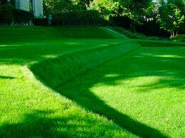 Газоны - Укладка рулонного газона, 0