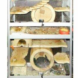 Клетки и домики  - Продаем клетку с шиншиллами, 0
