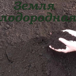 Субстраты, грунты, мульча - Земля, 0