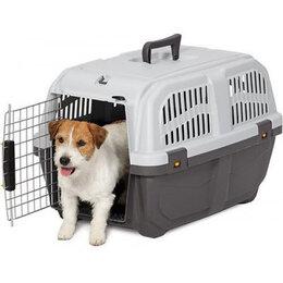 Транспортировка, переноски - Прокат. Переноска для домашних животных , 0