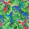 Простыня Этель 220х240 см «Попугаи» поплин, 125 г/м² по цене 1746₽ - Постельное белье, фото 1