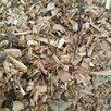 Измельчитель веток  по цене 94000₽ - Садовые измельчители, фото 9