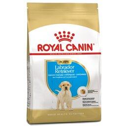 Прочие товары для животных - Сухой корм Royal Canin Labrador Retriever Puppy 12 кг, 0