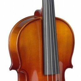 Смычковые инструменты - Stagg VL 3/4 лакированная скрипка 3/4, 0