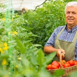 Рабочие - Пикировщик растений вахта 15 смен с питанием и проживанием , 0