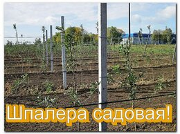 Шпалеры, опоры и держатели для растений - Шпалера для сада, 0