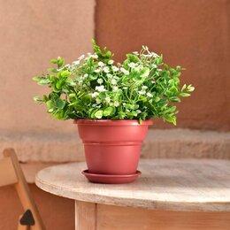 Садовые фигуры и цветочницы - Кашпо Милано D17 1,6 л бордо с поддоном, 0