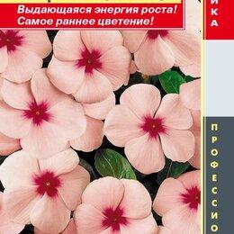 Приборы и аксессуары - Катарантус розовый (Барвинок) Пацифик Эприкот ПЛ, 0