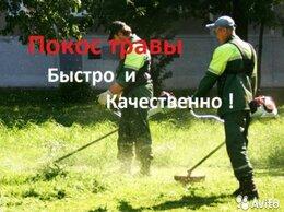 Бытовые услуги - Покос травы , 0