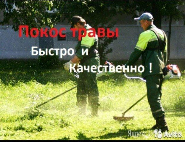 Покос травы  - Бытовые услуги, фото 0