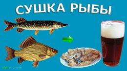 Сушилки для овощей, фруктов, грибов - Складная овощная и рыбная сетка сушилка с…, 0