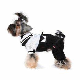 Одежда и обувь - костюм для собаки штаны рубашка для собаки, 0