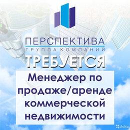 Агенты по недвижимости - Менеджер по продажам/Агент по недвижимости/Риелтор, 0