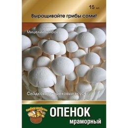 Луковичные растения - Мицелий Опенок мраморный с гидрогелем, 0