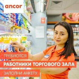 Продавец - Работник Торгового Зала, 0