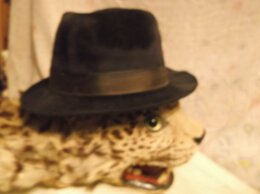 Головные уборы - шляпы велюр и  фетр Италия, 0