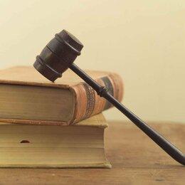 Финансы, бухгалтерия и юриспруденция - Юрист семейный. Споры по защите прав потребителей. Жилищные, пр.  споры., 0