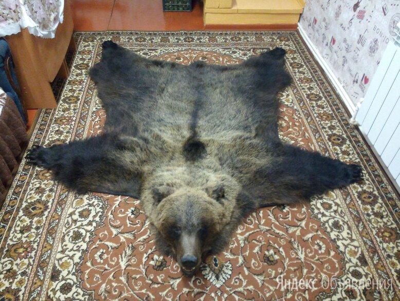 Ковер из медведя вид сбоку по цене 46000₽ - Ковры и ковровые дорожки, фото 0