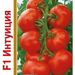 Семена - Томат Интуиция F1 1+1 (Гавриш), 0