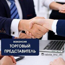 Торговые представители - Торговый представитель, 0