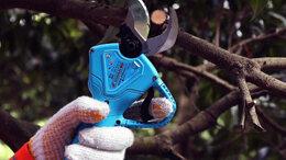 Электрические ножницы - Электросекатор , 0