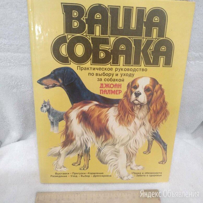 Джоан Палмер - Ваша собака по цене 700₽ - Словари, справочники, энциклопедии, фото 0