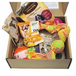 Прочие товары для животных - Подарочный бокс для собак, 0