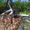 Велосипед круизер Nirve Белый лебедь по цене 25000₽ - Велосипеды, фото 4