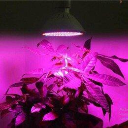 Аксессуары и средства для ухода за растениями - Лампа для растений уф новая в упаковке, 0