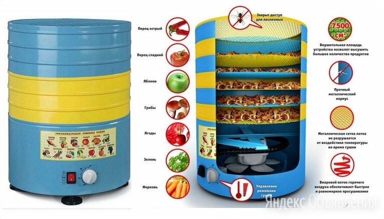 Электросушилка Элвин СУ-1 800Вт, 6 мет.поддонов по цене 4850₽ - Сушилки для овощей, фруктов, грибов, фото 0