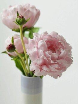 Продавец - флорист, 0