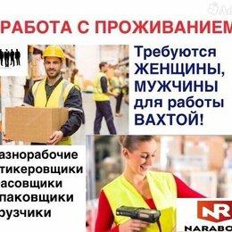 Работники склада - ГРУЗЧИК РАЗНОРАБОЧИЙ НА СКЛАД , 0