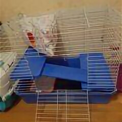 Клетки и домики  - Клетка для грызунов вака для крыс, дегу складная № 1 77247 59х40.5х48 см, 0