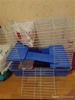 Клетка для грызунов вака для крыс, дегу складная № 1 77247 59х40.5х48 см по цене 5000₽ - Клетки и домики , фото 0