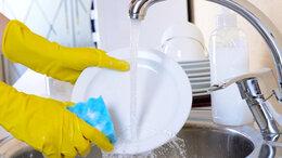 Посудомойщица - Уборщица/посудомойщица, 0