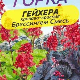 Семена - Гейхера кроваво-красная Брессингем смесь (Семена Алтая), 0