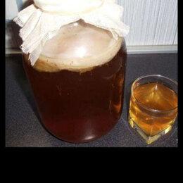 Продукты - Чайный гриб, 0