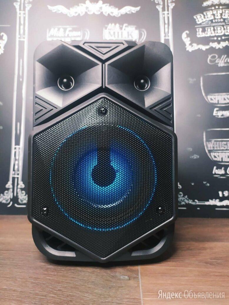 Портативная колонка с микрофоном 6120 по цене 2300₽ - Портативная акустика, фото 0