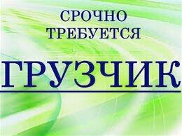 Грузчик - грузчик-мерчендайзер г. Владимир, 0