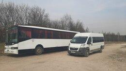 Аренда транспорта и товаров - Заказ автобусов от18 до 75 мест, 0