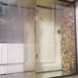 Аквариумы, террариумы, тумбы - аквариум 7 литров, 0