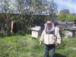Сельскохозяйственные животные - Продам семьи пчел и рои, 0
