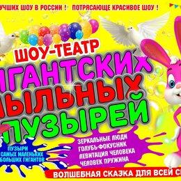 Концерт - Билет на детское шоу , 0