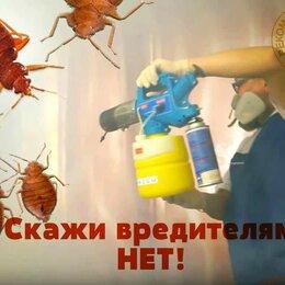 Бытовые услуги - Уничтожаем насекомых и грызунов, 0